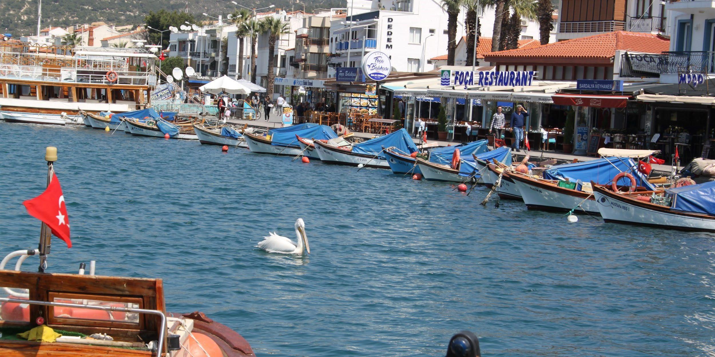 İzmir Foça Sahili Hakkında
